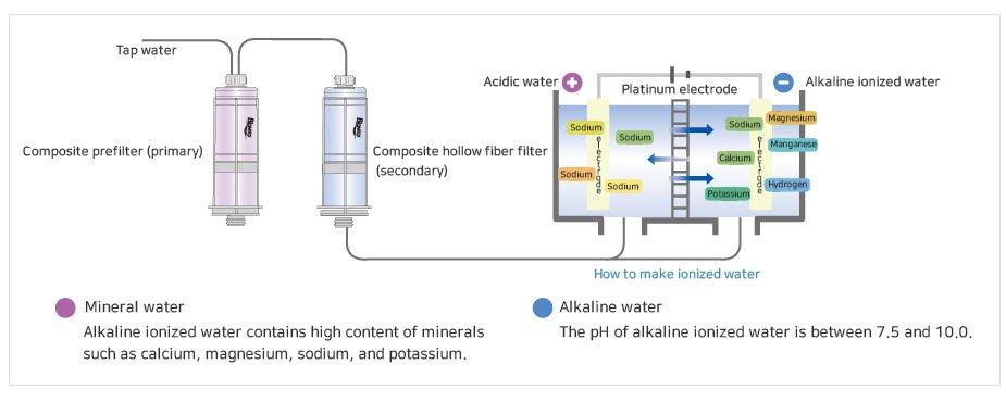 Cơ chế tạo nước PI Biontech